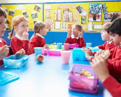 Positive Handling in Schools Online